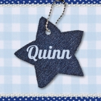Quinn | denim ster